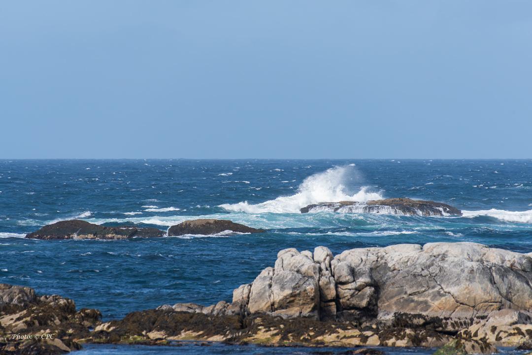 Landskap - havet
