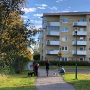 30 september - Luleå passar bra för människor hundar och friluftsliv.