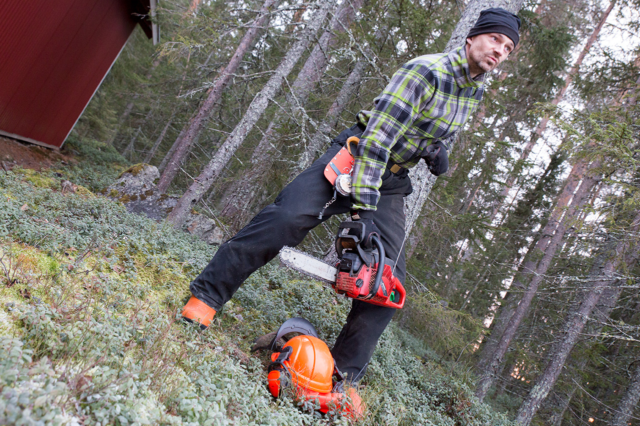 Mannen, skogen och verktygen