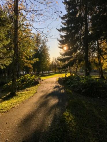 En vacker och stilla plats för eftertanke, Örnäsets kyrkogård - av Eva