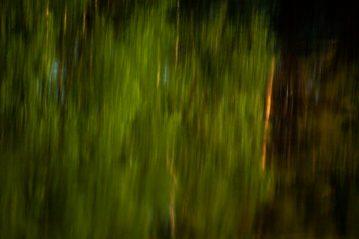 73 Grönt är skönt (31) - av Eva