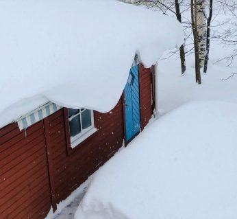 27 januari - det fortsätter att snö, men i lugnare takt. Av Ewa.