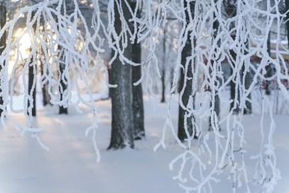 Vinterkallt vid kanalen, Luleå -av Margareta