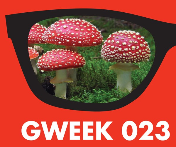 Gweek-023-600-Wide