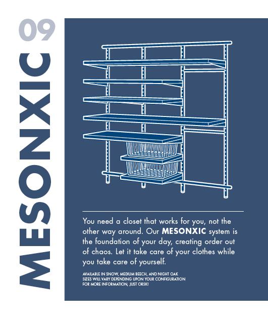 Mesonxic