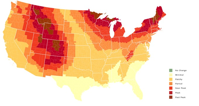 Interactive US Map Of Fall Foliage As It Progresses Toward - Us foliage map