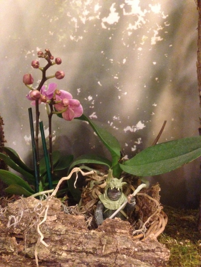 I incorporated some living plants like this miniature orchid.