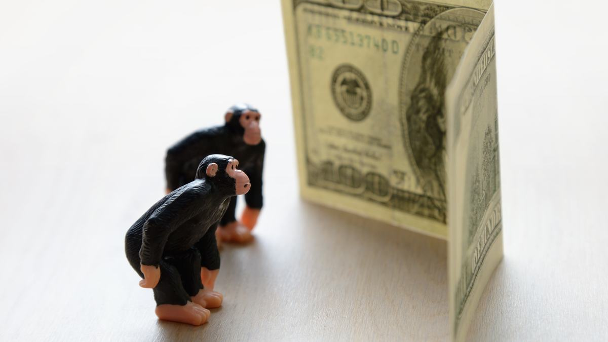 Monkeys, money, and the primate origins of human irrationality