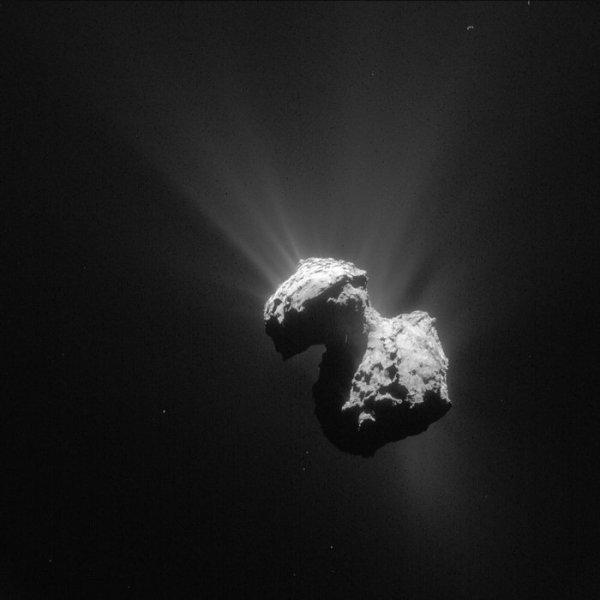 Comet_on_7_July_2015_NavCam_node_full_image_2
