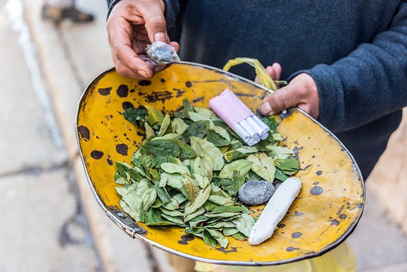 coca-leaves