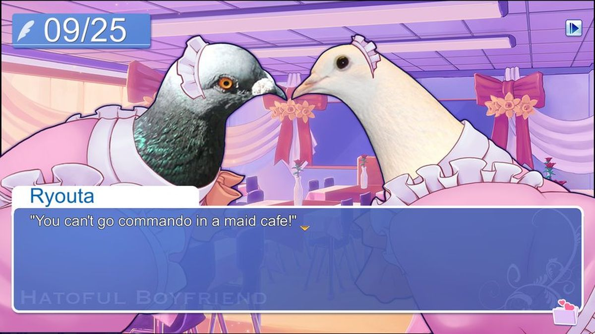 Now you can date pigeons on almost any platform