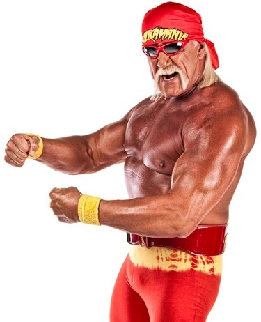 According to The T&a Bay Times Circuit Judge Pamela C&bell said on Monday that she will permit Hulk Hogan one  plain bandana  during his trial against ...  sc 1 st  Boing Boing & Hulk Hogan allowed
