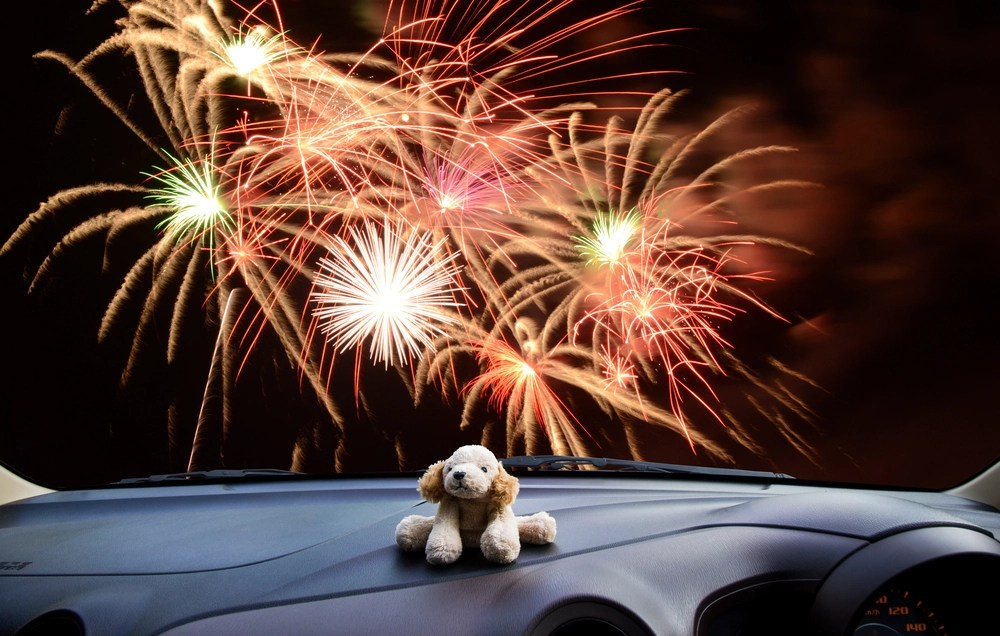 Dogs And Cats Hate Holiday Fireworks Here Are 3 Tips To Protect Your Pet On July 4th Boing Boing