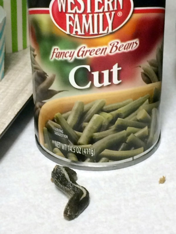 Snake-Head-Found-In-Can-of-Green-Beans
