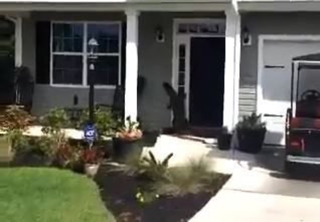 Screen capture from video shot by Gary Rogers shows an alligator seemingly reaching for the doorbell of a home.