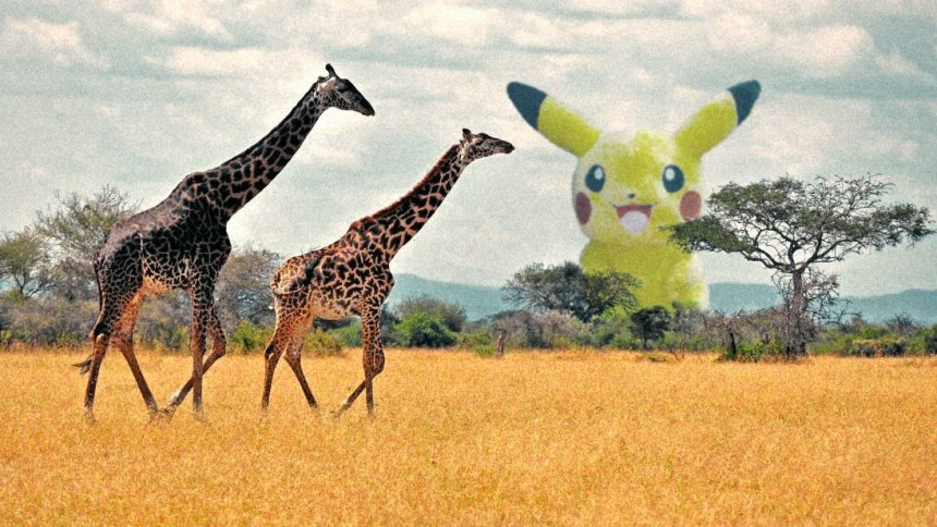 pikachu-wild-pokemon