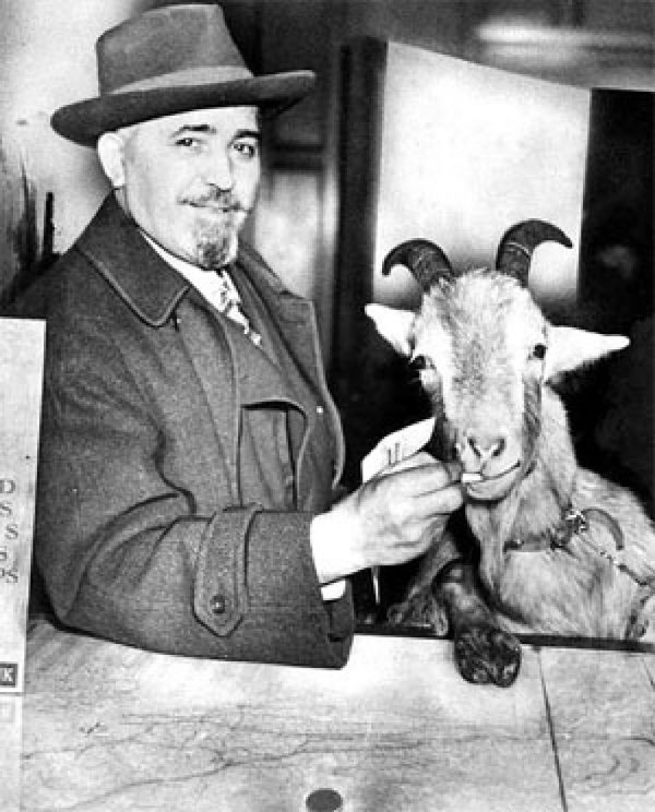 Billy Goat Tavern owner Billy Sianis' pet goat Murphy was lacking in hygiene and was thusly ejected from Wrigley Field in 1945.