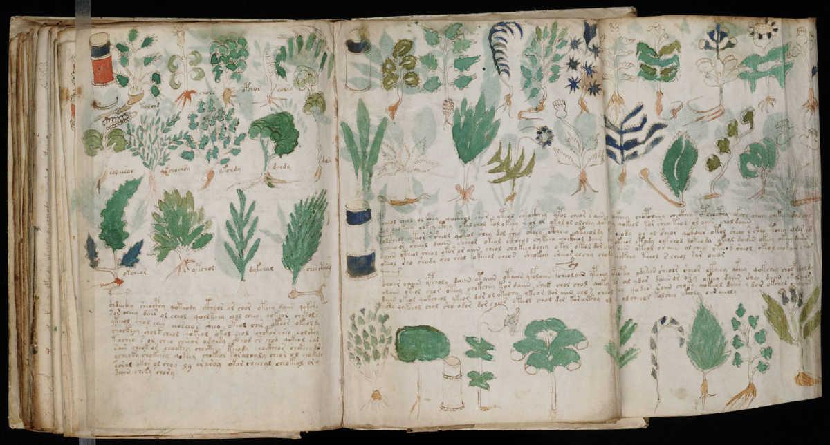 voynich manuscript - boing boing