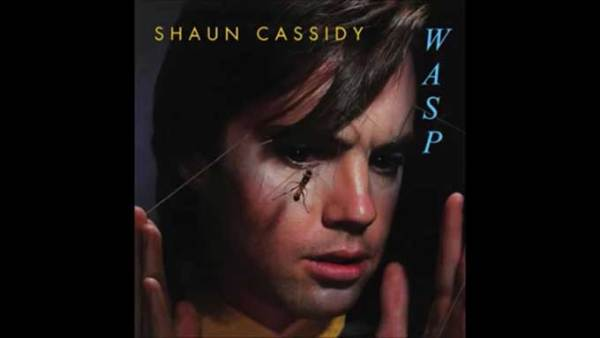 "Shaun Cassidy sings ""Rebel Rebel"" (1980)"