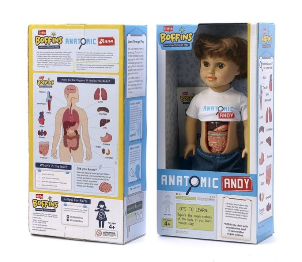 Meet Anatomic Anna And Andy Dolls With Removable Organs Boing Boing