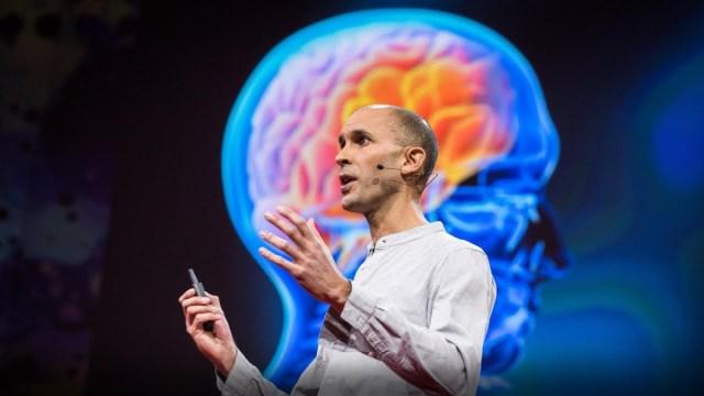 Neuroscientist explains how your brain hallucinates your conscious reality