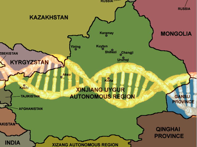 China will collect the DNA of every adult in Xinjiang province, where Uyghur people are systematically oppressed