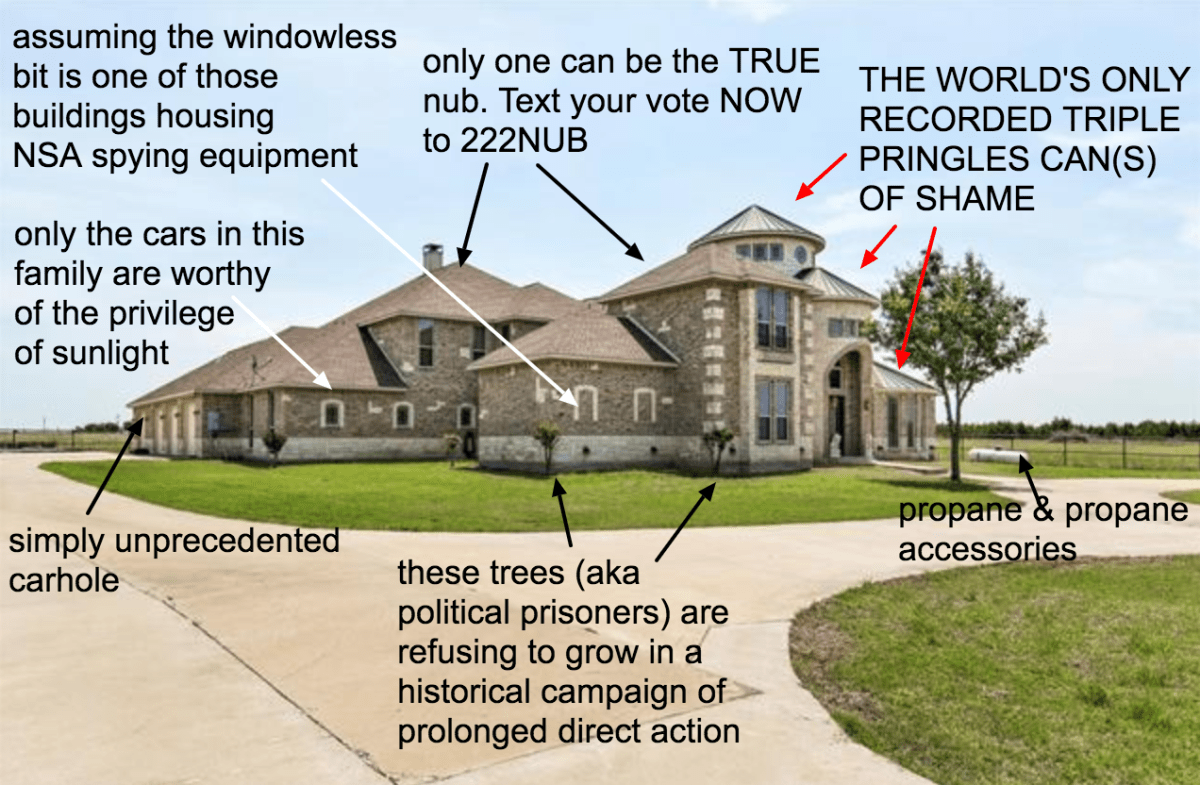 McMansion Hell's tour through Texas's Most Terrible fake castles