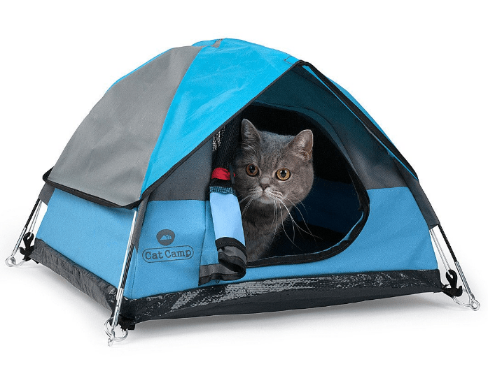 Cat-sized camping tents