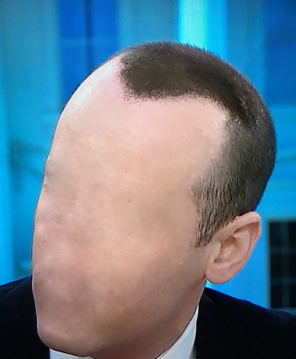 Trump Aide Stephen Miller Paints On Hair Boing Boing