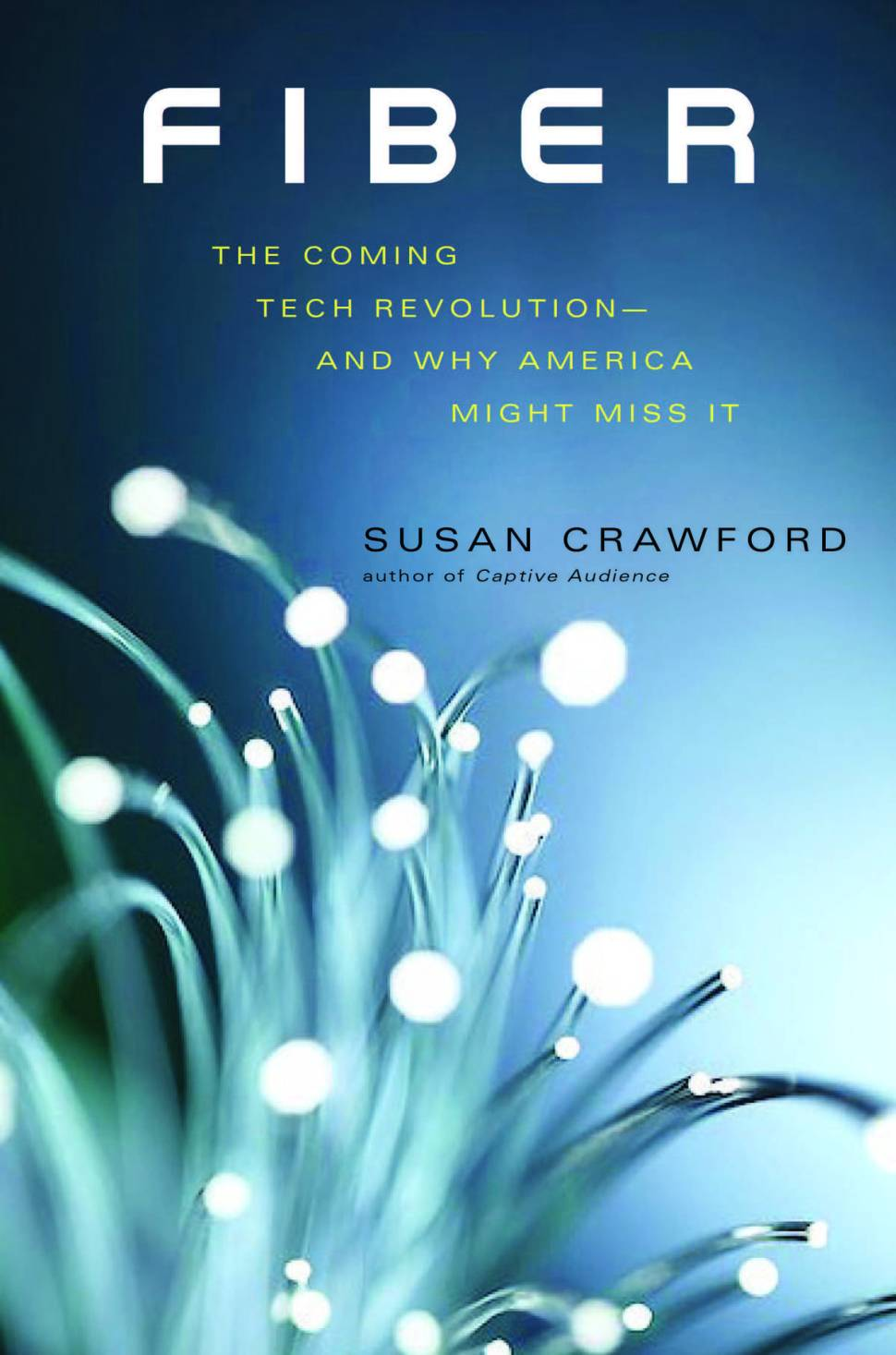 America s Fiber Future: Susan Crawford on how America s wired future is slipping away