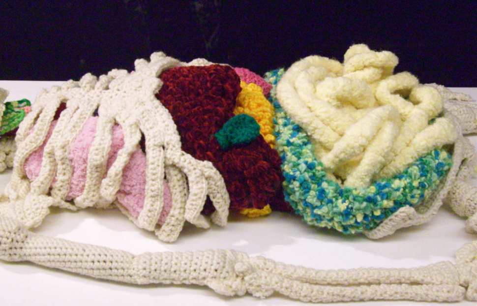 Magnificent crocheted human anatomical model