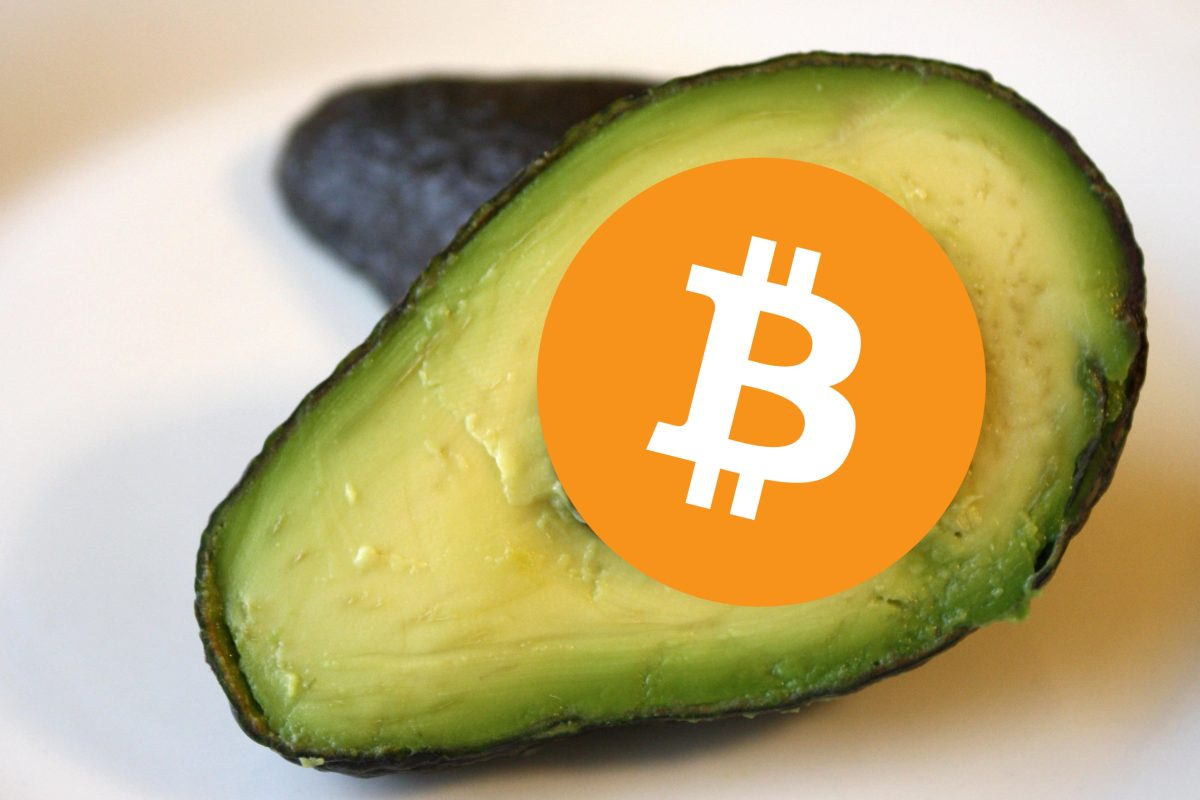 The mysterious correlation between avocado and Bitcoin prices