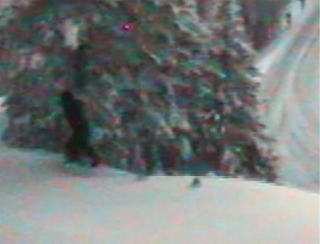 Washington state government tweets photo of Bigfoot
