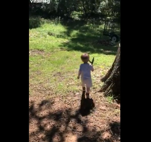 Toddler picks up snake instead of stick while playing fetch with its dog