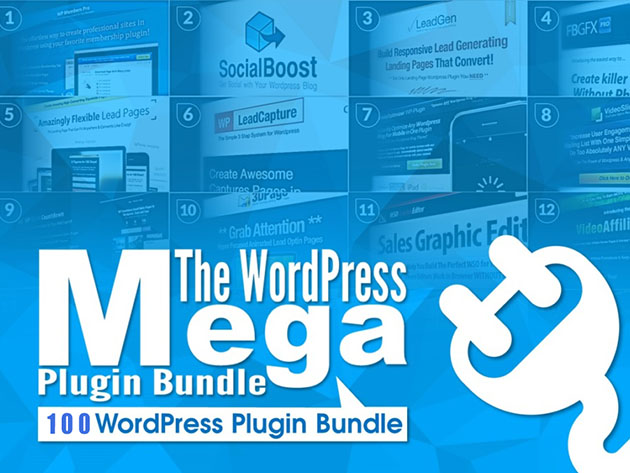 This plugin treasure trove can instantly turn your WordPress site into a performer