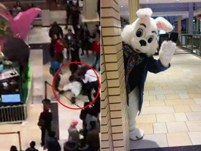 https://i2.wp.com/media.breitbart.com/media/2016/03/mall-Easter-bunny-brawl-facebook-640x480.jpg