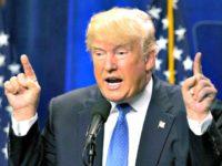 Trump New Hampshire AP