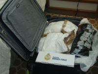 In this photo released by Australia Boarder Force, a suitcase filled with cocaine after it was seized by customs onboard the MS Sea Princess in Sydney, Australia, Sunday, Aug. 28, 2016. Three Canadian cruise ship passengers were charged with drug smuggling Monday, Aug. 29, after Sydney police allegedly found 95 kilograms (209 pounds) of cocaine in their cabin luggage. The haul valued at 31 million Australian dollars ($23 million) was the largest seizure in Australia of narcotics carried by passengers of a cruise ship or airliner, Australian Border Force commander Tim Fitzgerald said. (Australian Boarder Force via AP)