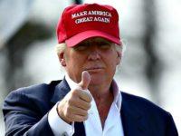 Trump in Hat MAGA