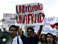 Miami Protest Undocumented-AP