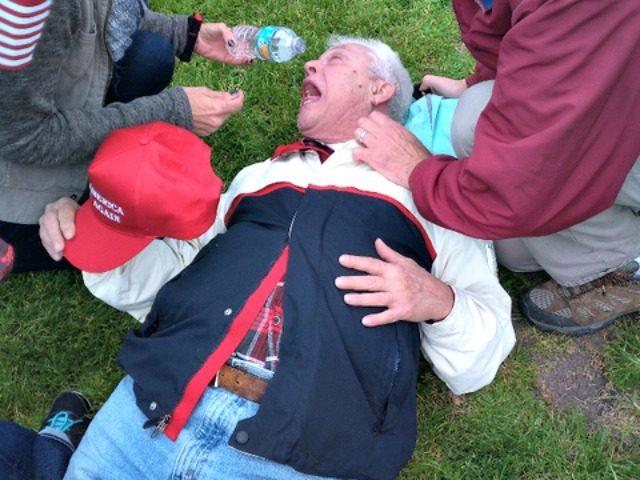 Image result for antifa pepper sprays old man