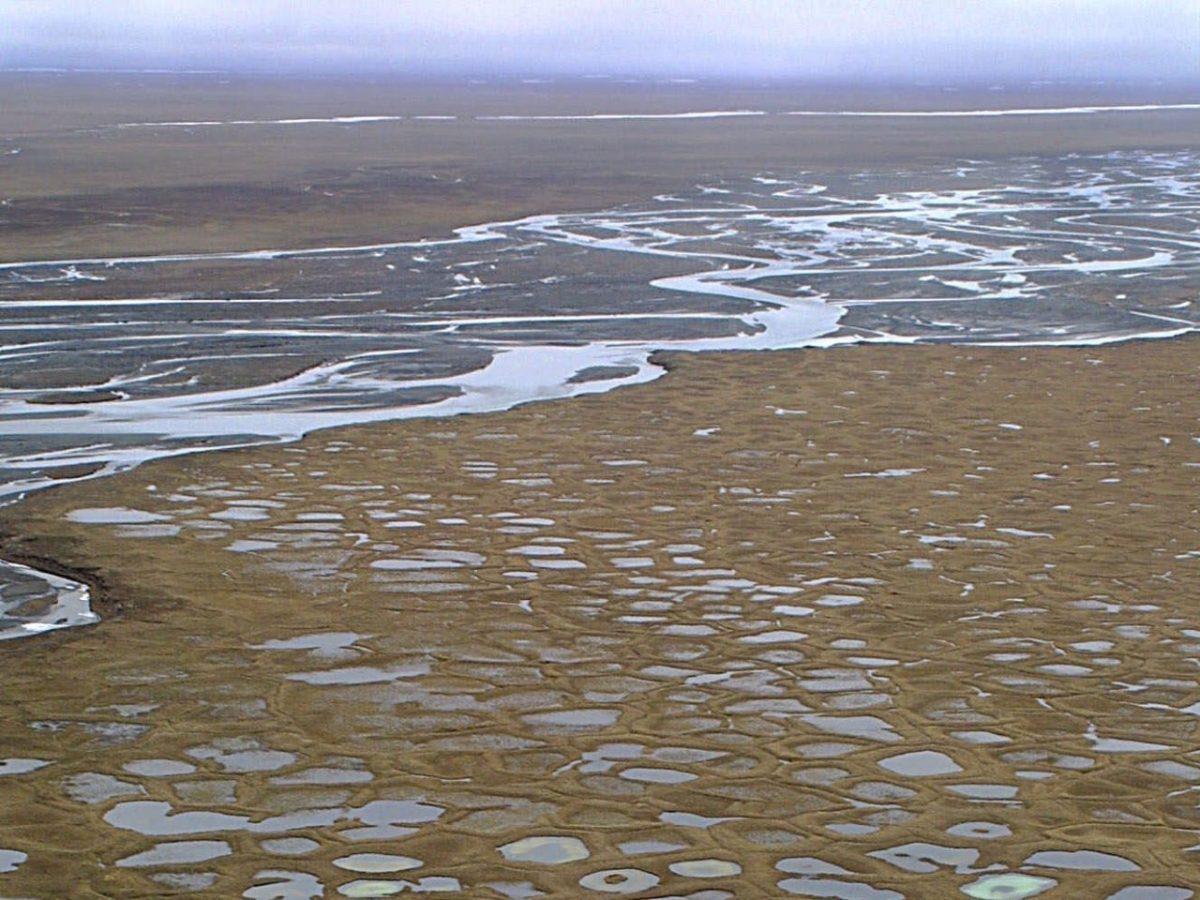 , Report: Biden to Cancel Oil, Gas Leases in Arctic National Wildlife Refuge (ANWR), Despite High Gas Prices, Nzuchi Times Breitbart