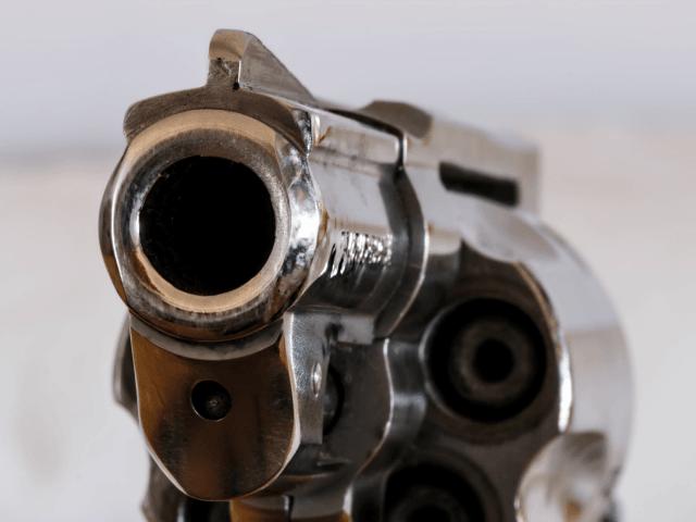 firearm-handgun-revolver-gun-53351