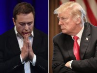 Elon Musk and President Donald Trump.