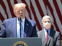 Dr. Anthony Fauci Defends Trump on Coronavirus