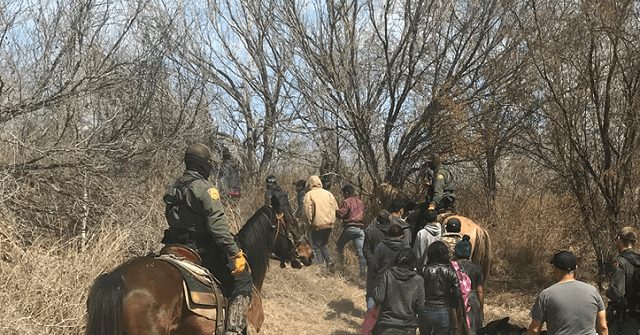 , Exclusive — Rep. Jody Hice: Cartels 'Control Every Square Inch of the Border', Nzuchi Times Breitbart