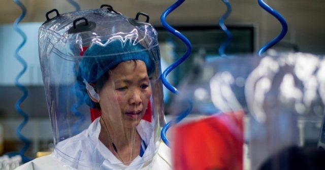 , Report: Wuhan Virology Laboratory DID Keep Live Bats on Premises, Nzuchi Times Breitbart