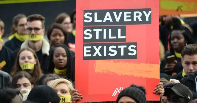 , UK's Largest People Trafficking Gang Shipped in Hundreds of Polish Migrants, Enslaved Them, Nzuchi Times Breitbart