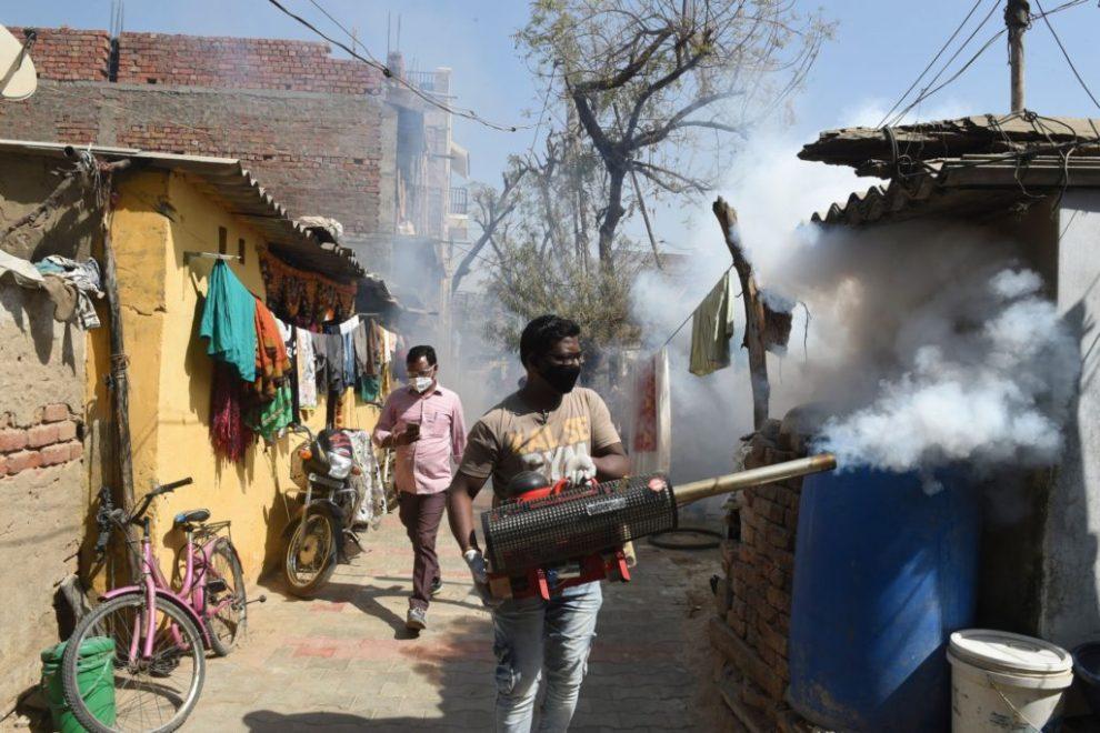 , India Documents Its First Bird Flu Death, Nzuchi Times Breitbart
