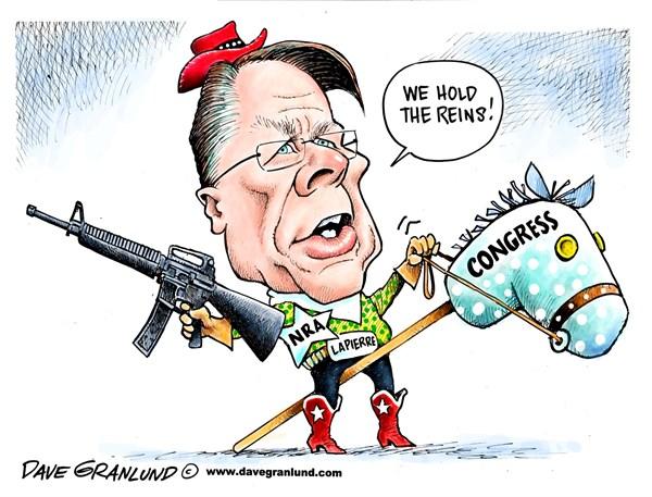 131206 600 NRA and Congress cartoons